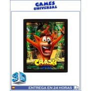 Crash Bandicoot cuadro en 3D