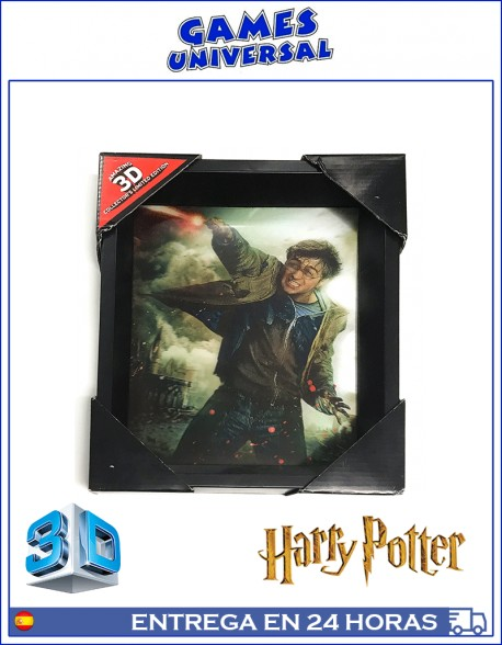 Harry Potter Expelliarmus Cuadro en 3D